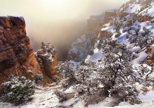 beautiful-one_grand-canyon-arizona-usa_04