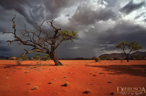 before_the_storm-namibia_africa-_03