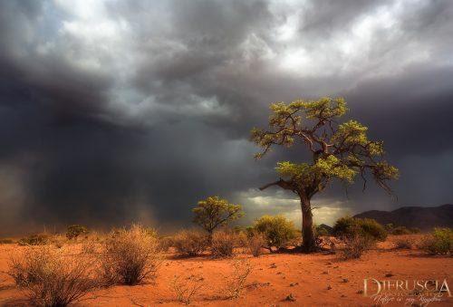 Holding_On-Namibia_Africa