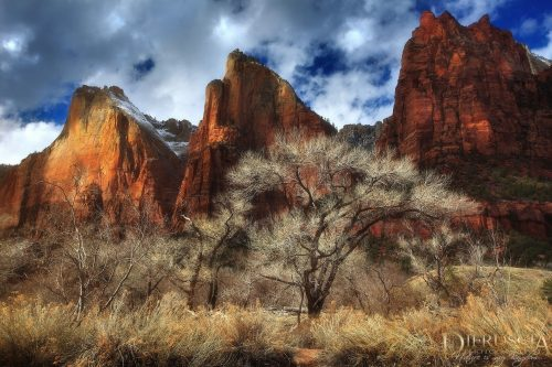 the-golden-age_zion_utah
