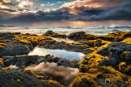 New-Sensation_Big-Island-Hawaii