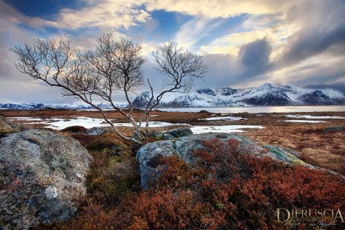 Unspoiled-Escape_Norway